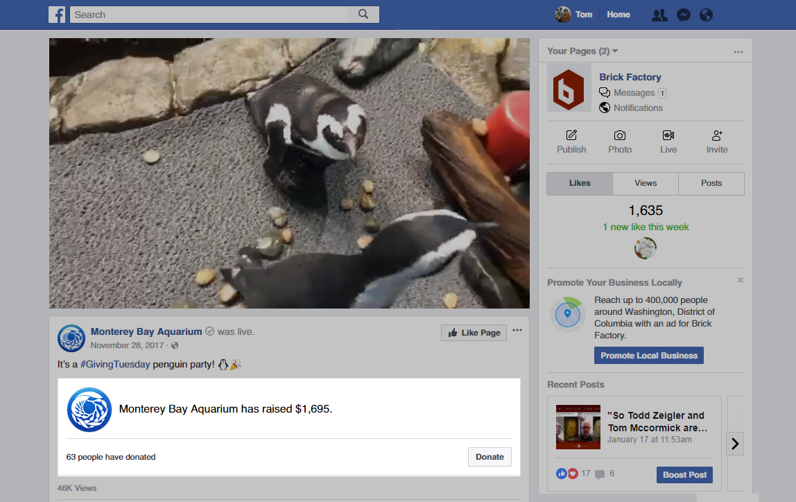 We Tried Facebook's New Donation Tools  Here's What We learned